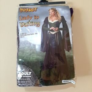Medieval Princess Lady In Waiting Costume M